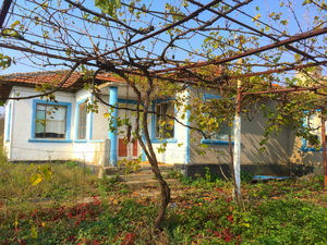 Rural house with huge yard 5 miles from the sea