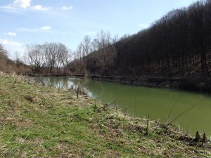Nice, small lake used for fish breeding up for sale