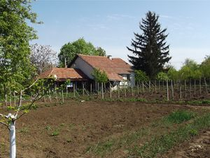 Country house with annex, barn, garage and nice, big garden