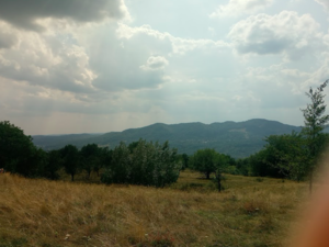 10.000 sqm land for sale in Romania