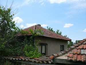 Cheap rural house with an extensive gardengreat investment
