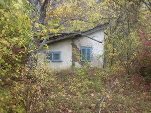 Small bungalow with land located in a forest near big city