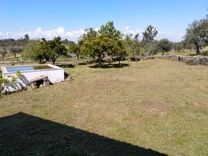 Litle farm with 4.500m2 and small house, available in April.