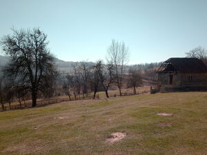 COUNTRY HOUSE & LAND (1000 m2)