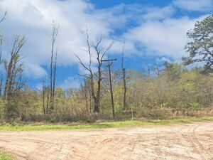 0.42 acres of raw land in Conroe, Texas - Conroe TX 77302