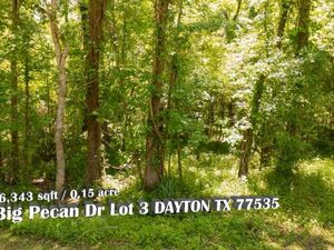 Want to Own A Piece Of Wilderness? 0 Big Pecan Dr Lot 3