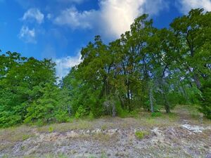 Great Investment at Great Price beside Cedar Creek Lake