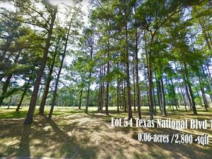 Buy your own piece of Paradise in Willis, TX!