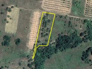 Agricultural land Sredno Gramage 2673m2. 4km from main town