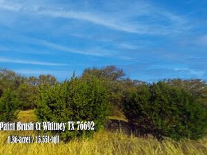Rare opportunity to own a private lot in White Bluff