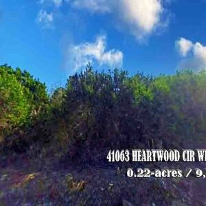 Great Investment for Vacant Land on Lake Whitney, TX.